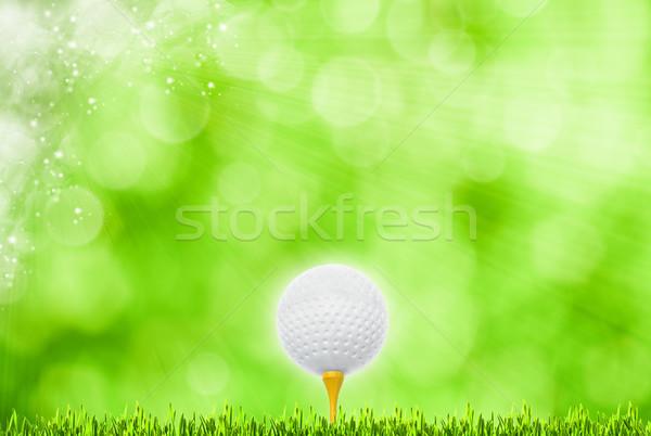 abstract golf sport art backgrounds Stock photo © tolokonov