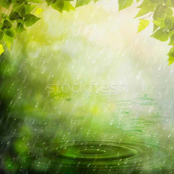 Zomer regen abstract natuurlijke achtergronden water Stockfoto © tolokonov
