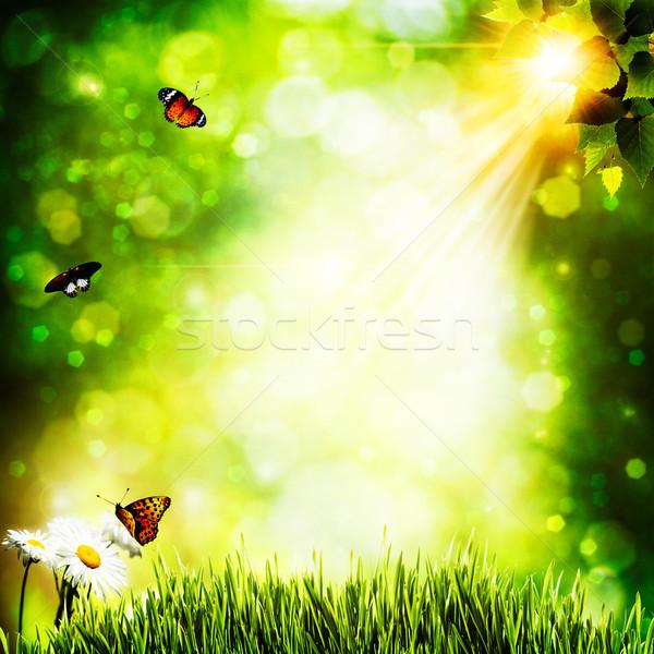 Summer natural backgrounds with beauty bokeh Stock photo © tolokonov