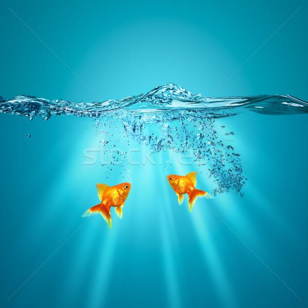 Divertente subacquea sfondi design acqua abstract Foto d'archivio © tolokonov