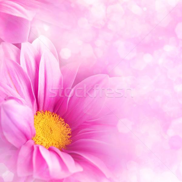 Soyut arka dizayn çiçek yaprak Stok fotoğraf © tolokonov