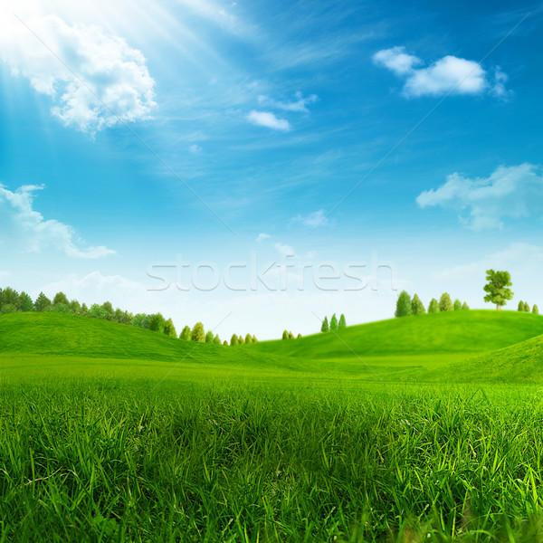 Belleza verano día verde colinas primavera Foto stock © tolokonov