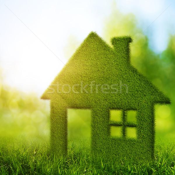 Eco casa resumen ambiental fondos belleza Foto stock © tolokonov