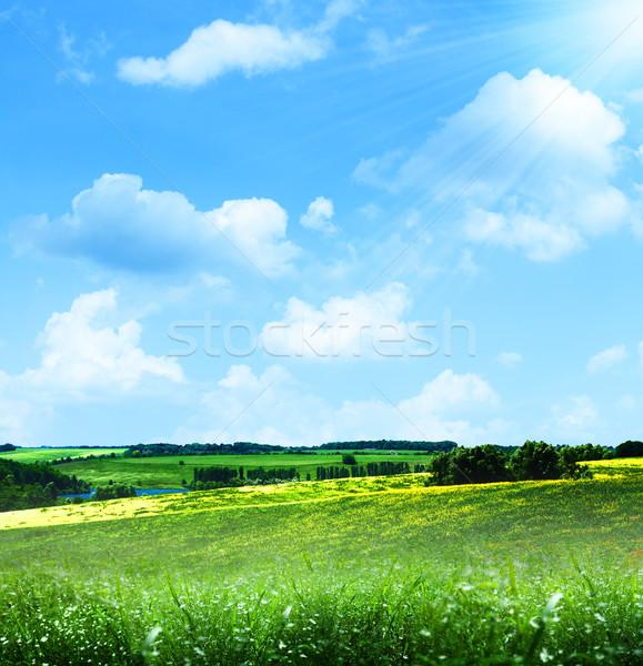 happy hills. Abstract summer landscape under blue skies Stock photo © tolokonov