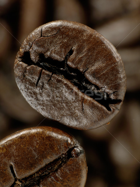 Coffee bean in deep shadows over unfocused grains background Stock photo © tolokonov
