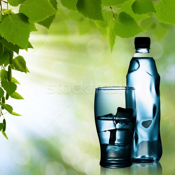 Voorjaar mineraalwater glas ijs natuurlijke achtergronden Stockfoto © tolokonov