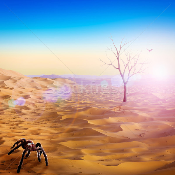 Life after the humanity, abstract environmental backgrounds Stock photo © tolokonov