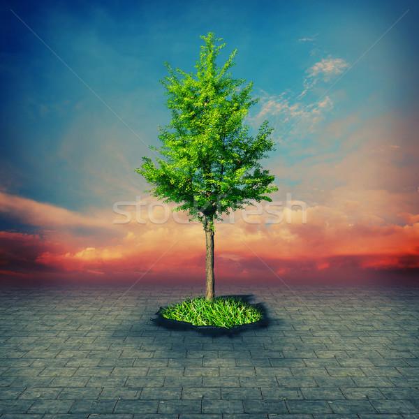 Steen leeftijd abstract milieu achtergronden ontwerp Stockfoto © tolokonov