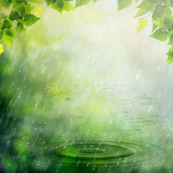 лет дождь аннотация природного фоны дизайна Сток-фото © tolokonov
