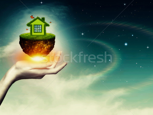 Whole world in your hands, abstract environmental backgrounds Stock photo © tolokonov