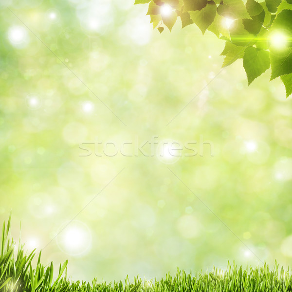 Stock photo: Abstract natural backgrounds with beauty bokeh and lens flare