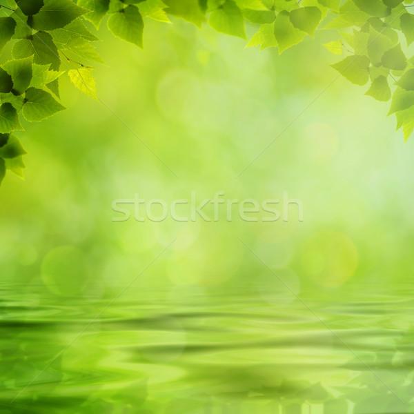 Schönheit natürlichen Hintergrund Reflexion Wasseroberfläche Baum Stock foto © tolokonov