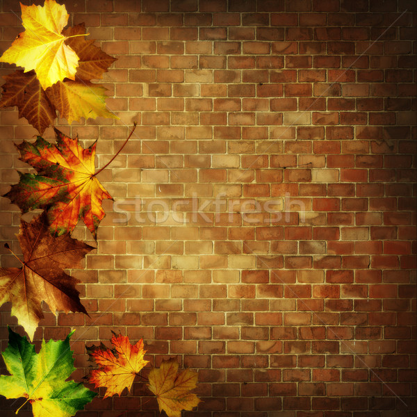 Abstract autumnal backgrounds against old brickwall Stock photo © tolokonov