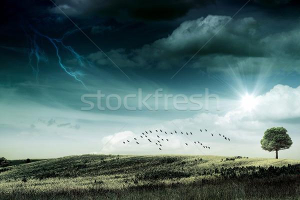 Utolsó napsugár hurrikán absztrakt természetes hátterek Stock fotó © tolokonov