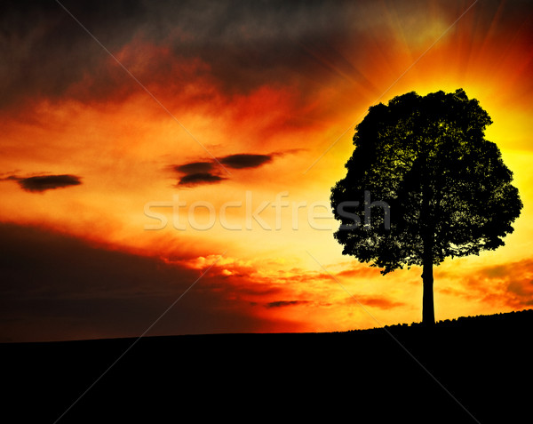 Stockfoto: Fantastisch · ochtend · heuvels · abstract · achtergronden · voorjaar