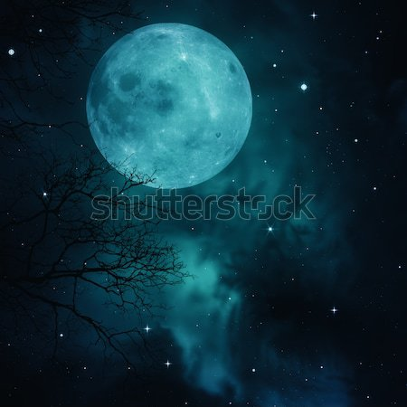 Full Moon on the skies, abstract natural backgrounds Stock photo © tolokonov