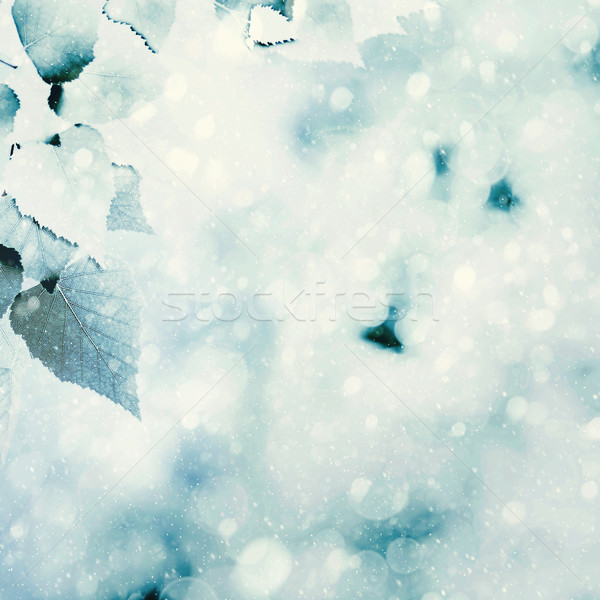 Frozen summer. Natural winter backgrounds with beauty bokeh Stock photo © tolokonov