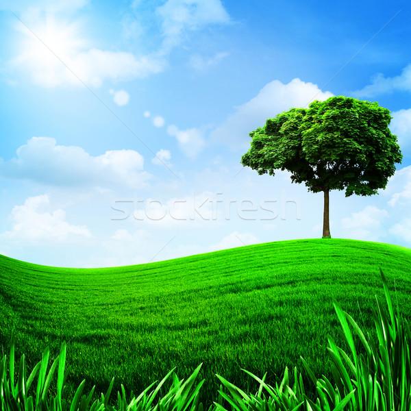 Yeşil tepeler mavi gökyüzü doğal arka çiçek Stok fotoğraf © tolokonov
