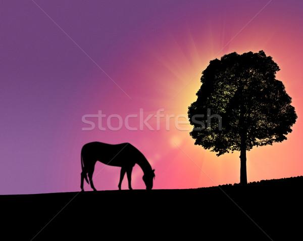 Fantastisch ochtend heuvels abstract achtergronden achtergrond Stockfoto © tolokonov