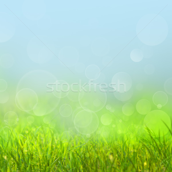 Abstract natural backgrounds with beauty bokeh for your design Stock photo © tolokonov