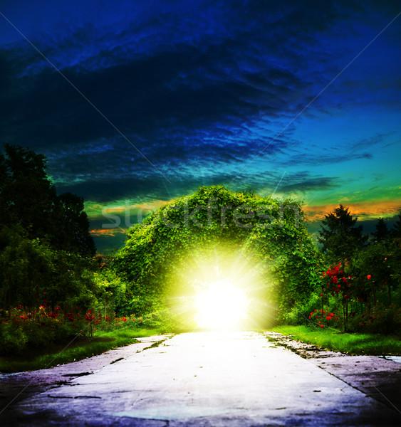 Portal abstrato espiritual fundos grama escolas Foto stock © tolokonov