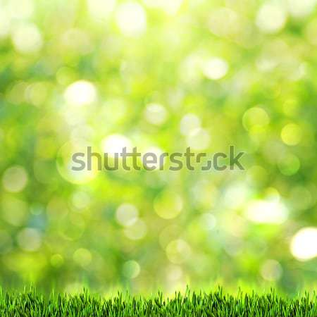 Green grass over abstract summer backgrounds with beauty bokeh Stock photo © tolokonov