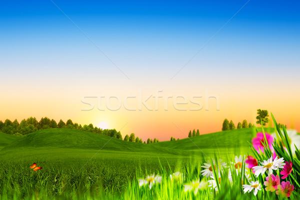 Güzellik akşam soyut doğal manzara çiçek Stok fotoğraf © tolokonov