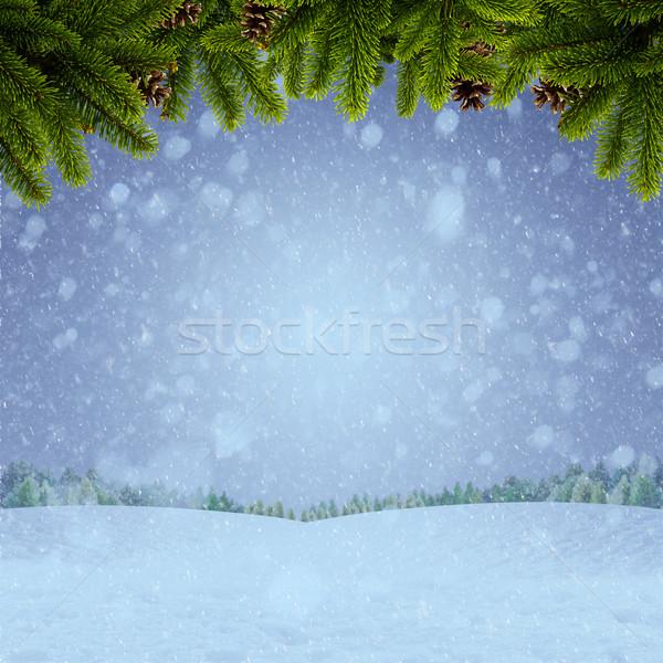 抽象的な 冬 クリスマス 背景 デザイン 森林 ストックフォト © tolokonov