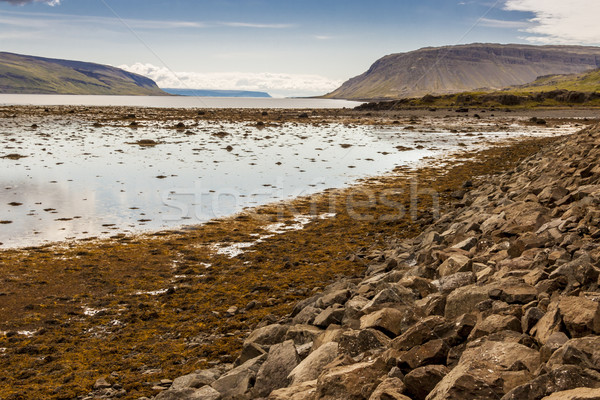 Coast of  Kollafjordur fjord - Iceland. Stock photo © tomasz_parys