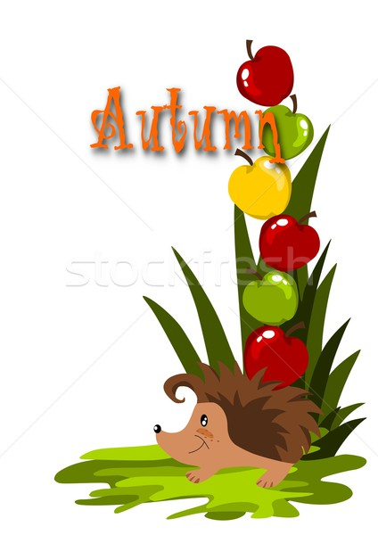 Colorful apples and happy hedgehog on the green grass. Stock photo © tomasz_parys