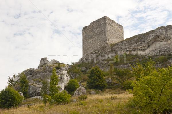 Old castle - Jura region, Poland Stock photo © tomasz_parys