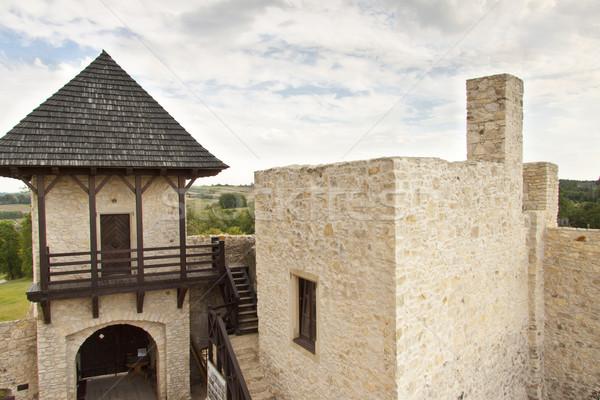 Kapu kastély Lengyelország kilátás fal fű Stock fotó © tomasz_parys