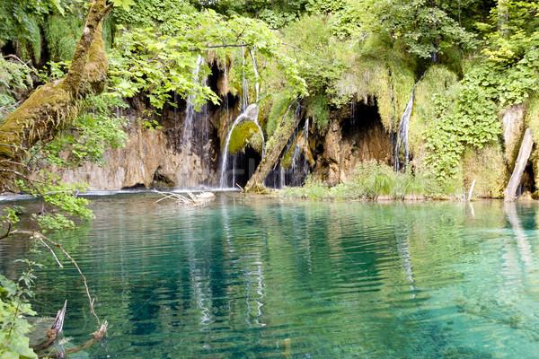 Sauvage nature Croatie unesco parc Europe Photo stock © tomasz_parys