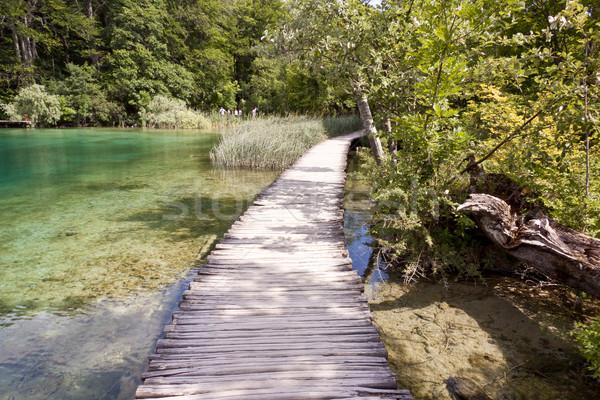 путь Хорватия Европа узкий дороги Сток-фото © tomasz_parys