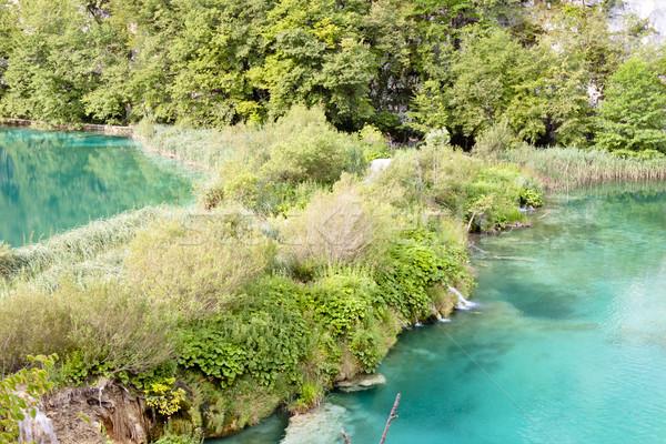 Hırvatistan park su ağaç manzara yaprak Stok fotoğraf © tomasz_parys