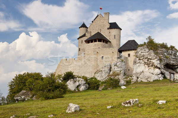 Eski kale Polonya görmek çim Bina Stok fotoğraf © tomasz_parys