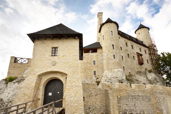 Château porte région Pologne herbe Photo stock © tomasz_parys