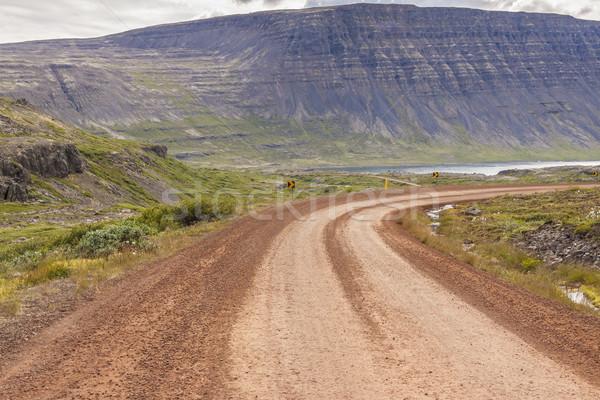 Sóder üres útvonal Izland vidéki vízesés Stock fotó © tomasz_parys