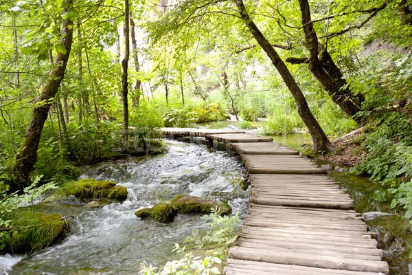 Plitvice lakes - wooden pathway. Stock photo © tomasz_parys