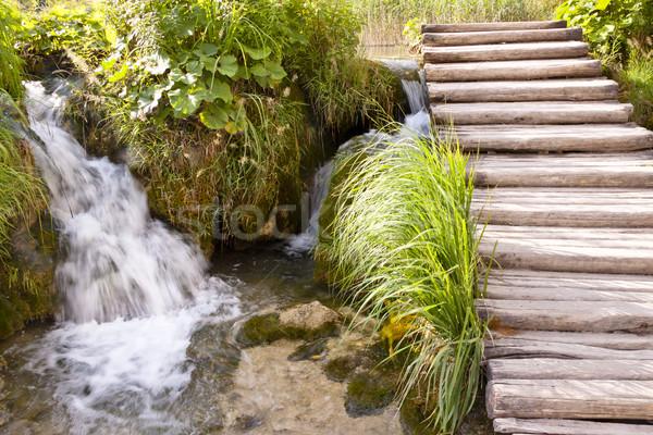 Stock fotó: Kicsi · vízesés · park · Horvátország · égbolt · víz