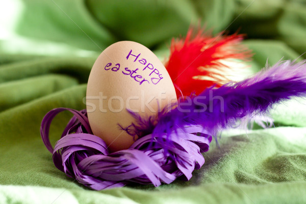 Pâques simple couronne coloré beauté nature Photo stock © tomasz_parys