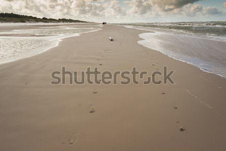 Baltic sea - Leba, Poland. Stock photo © tomasz_parys