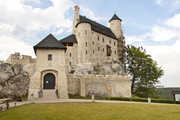 Zdjęcia stock: Front · zamek · Polska · widoku · region · trawy