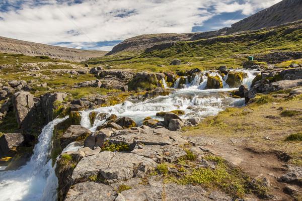 Temiz su nehir İzlanda temizlemek güneşli yaz Stok fotoğraf © tomasz_parys