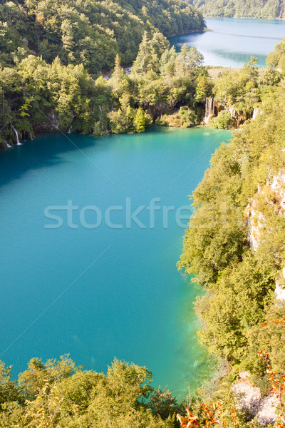 Plitvice lakes aerial view - Croatia, Balkans. UNESCO place. Stock photo © tomasz_parys
