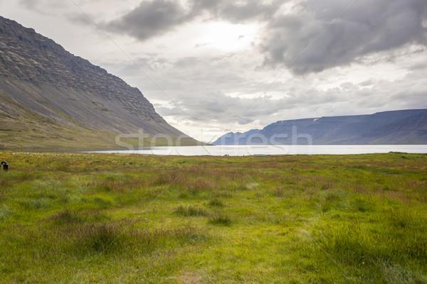 Dynjandisvogur fjord - Iceland. Stock photo © tomasz_parys