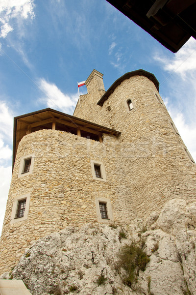Kule kale Polonya eski köy çim Stok fotoğraf © tomasz_parys