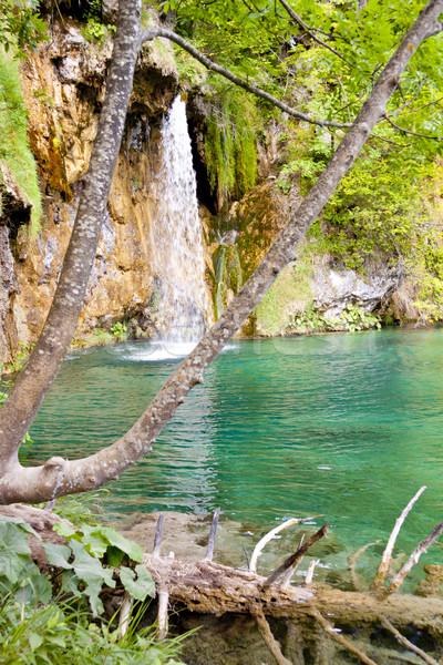 Croatie Europe parc unesco lieu eau Photo stock © tomasz_parys