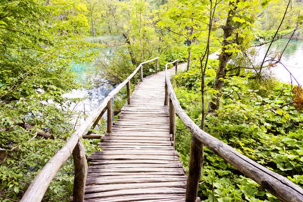 Fából készült ösvény Horvátország víz tájkép hegyek Stock fotó © tomasz_parys