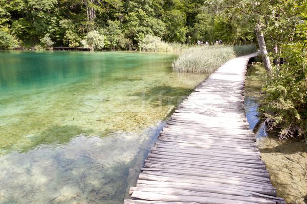 Unesco park Horvátország fából készült keskeny ösvény Stock fotó © tomasz_parys